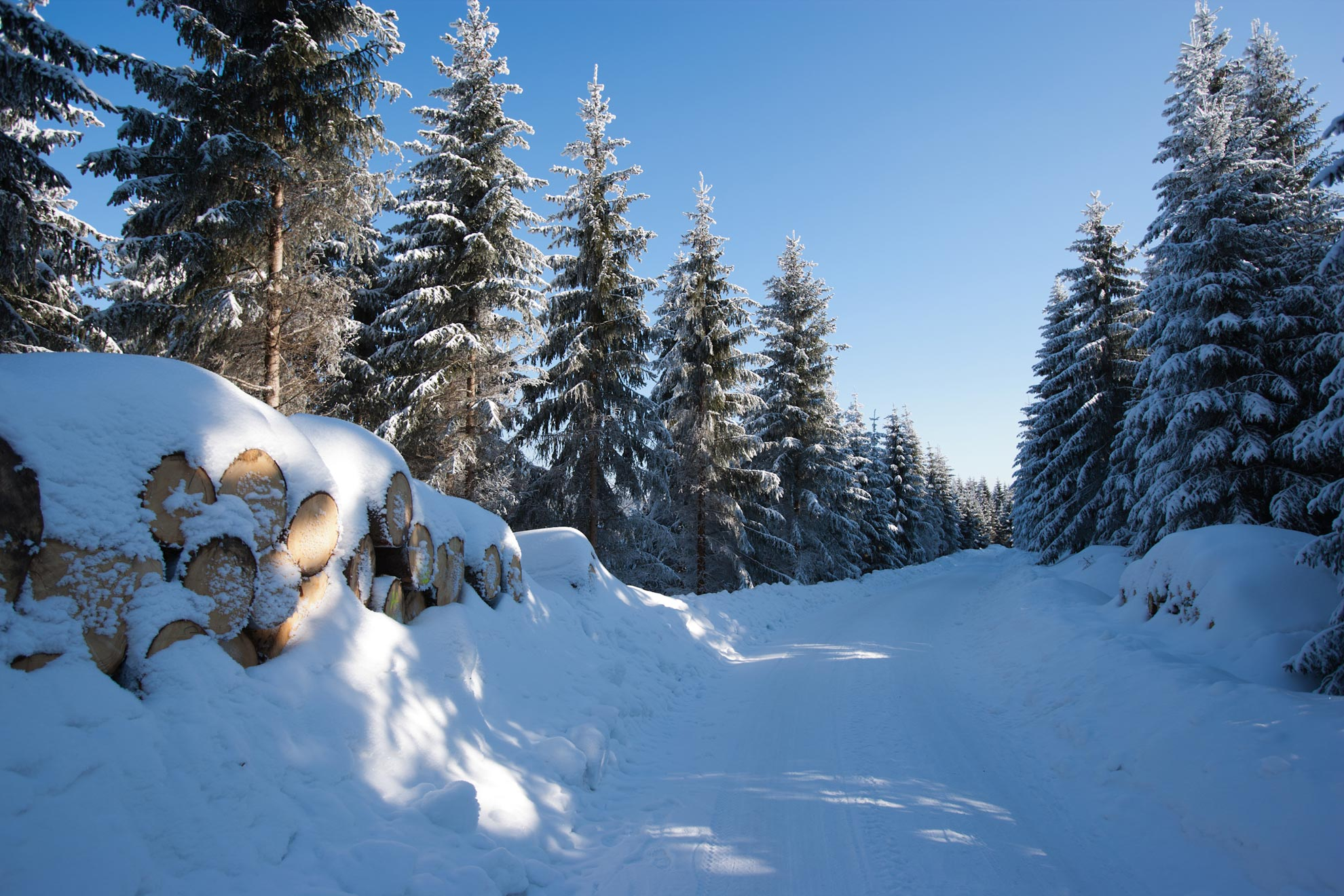 winter_oberhof
