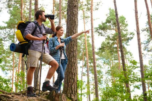Wandern in Thüringer Wald